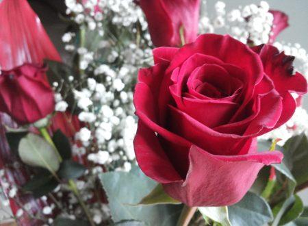 """Un amore felice"" di Wislawa Szymborska"